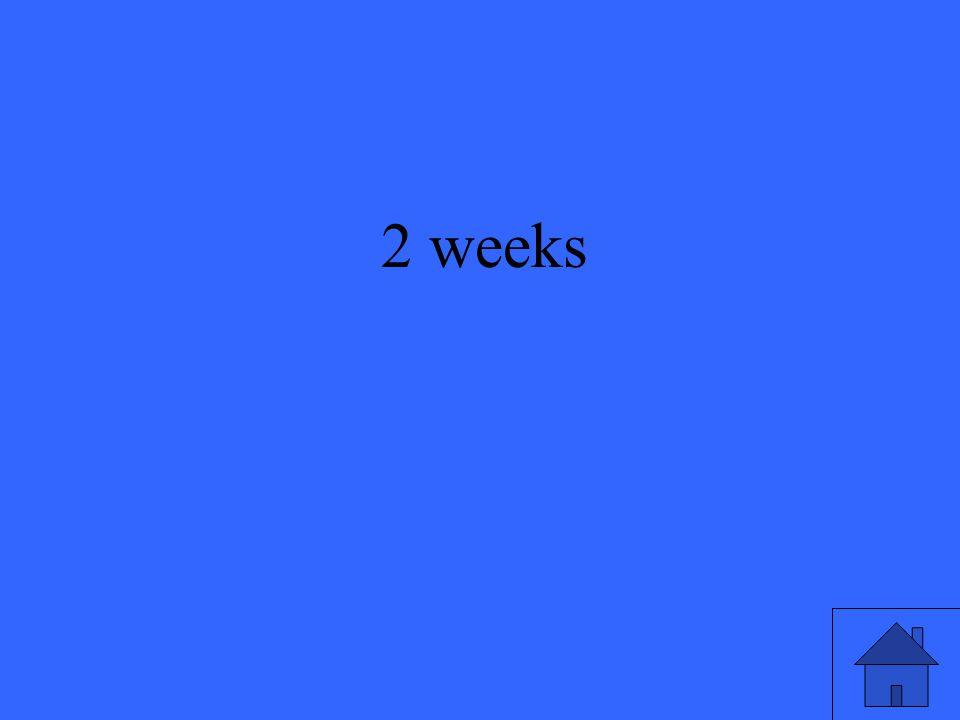 33 2 weeks