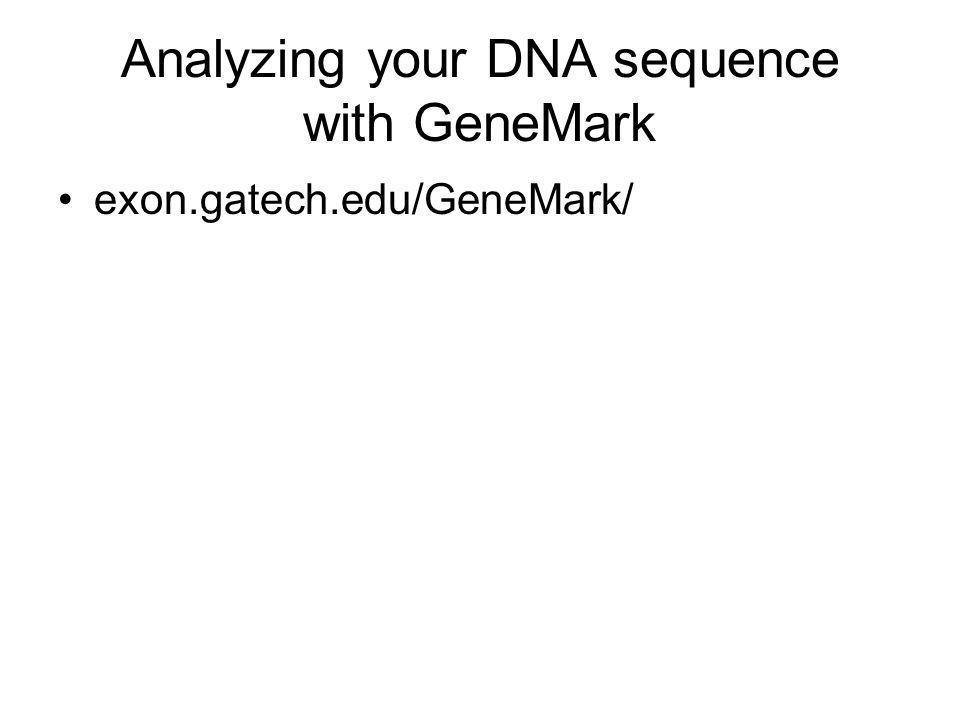Analyzing your DNA sequence with GeneMark exon.gatech.edu/GeneMark/