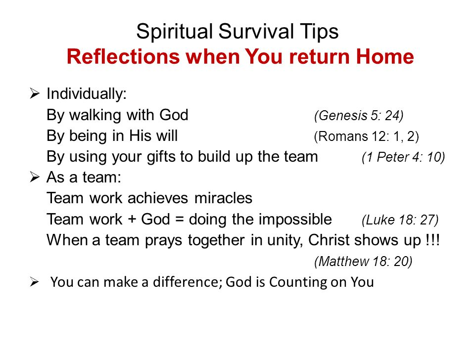 Spiritual Survival Tips Reflections when You return Home  Individually: By walking with God (Genesis 5: 24) By being in His will (Romans 12: 1, 2) By