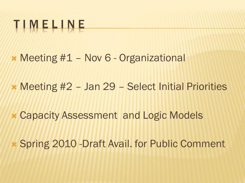  Meeting #1 – Nov 6 - Organizational  Meeting #2 – Jan 29 – Select Initial Priorities  Capacity Assessment and Logic Models  Spring 2010 -Draft Avail.