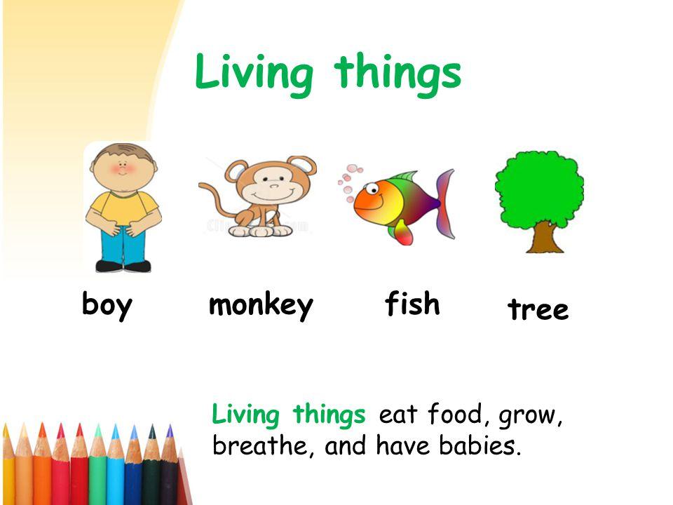 Living things boymonkeyfish tree Living things eat food, grow, breathe, and have babies.