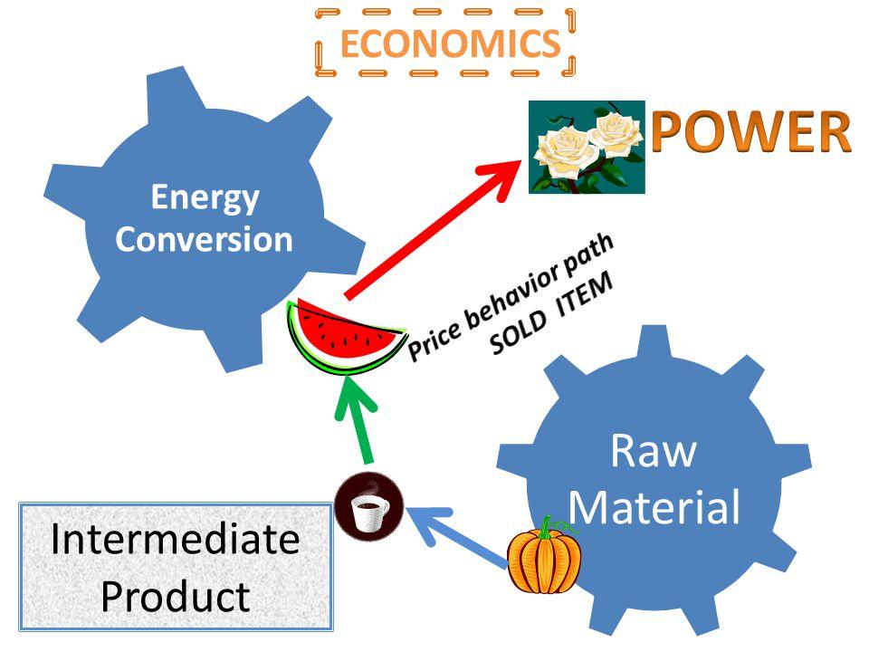Raw Material Intermediate Product Energy Conversion Intermediate Product ECONOMICS