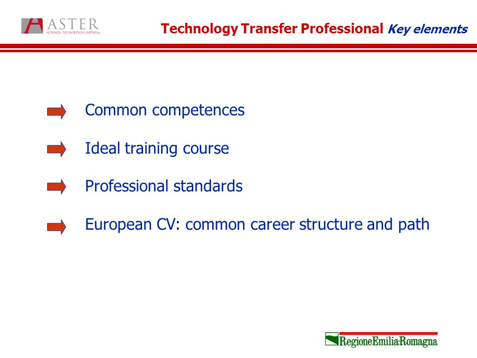 Common competences Ideal training course Professional standards European CV: common career structure and path Technology Transfer Professional Key elements