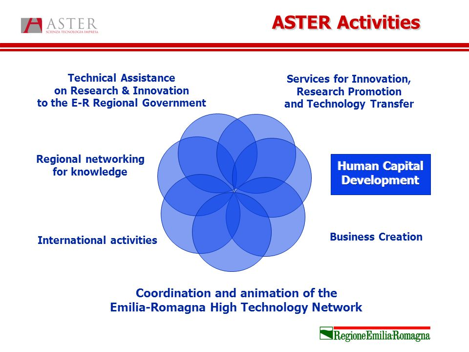 Services for Innovation, Research Promotion and Technology Transfer Business Creation Coordination and animation of the Emilia-Romagna High Technology Network International activities Regional networking for knowledge Technical Assistance on Research & Innovation to the E-R Regional Government ASTER Activities