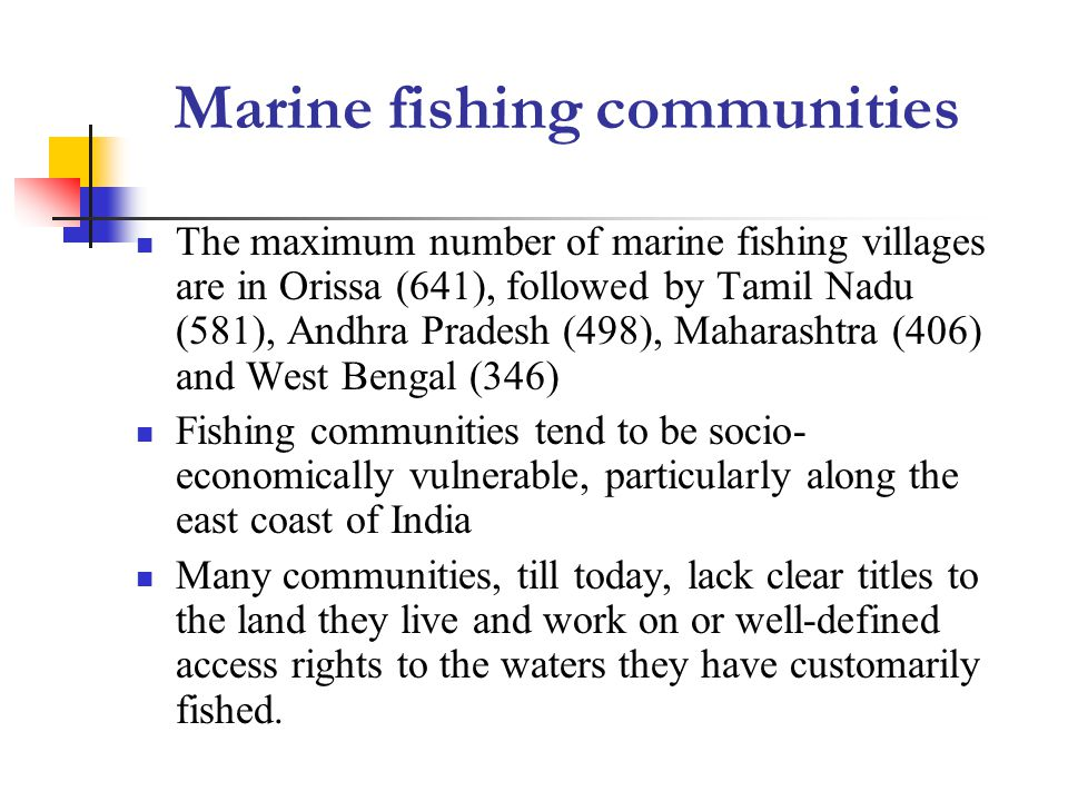 Marine fishing communities The maximum number of marine fishing villages are in Orissa (641), followed by Tamil Nadu (581), Andhra Pradesh (498), Maharashtra (406) and West Bengal (346) Fishing communities tend to be socio- economically vulnerable, particularly along the east coast of India Many communities, till today, lack clear titles to the land they live and work on or well-defined access rights to the waters they have customarily fished.