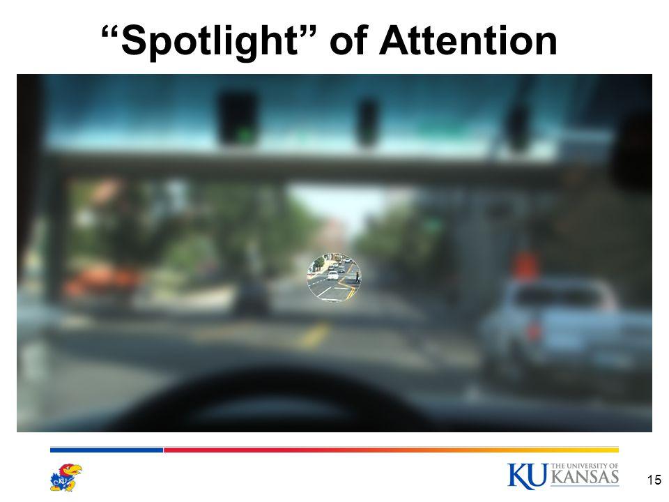 """""""Spotlight"""" of Attention 15"""