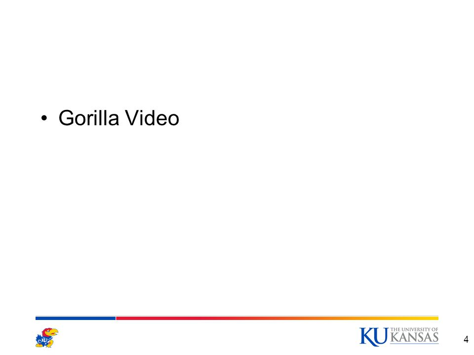 4 Gorilla Video