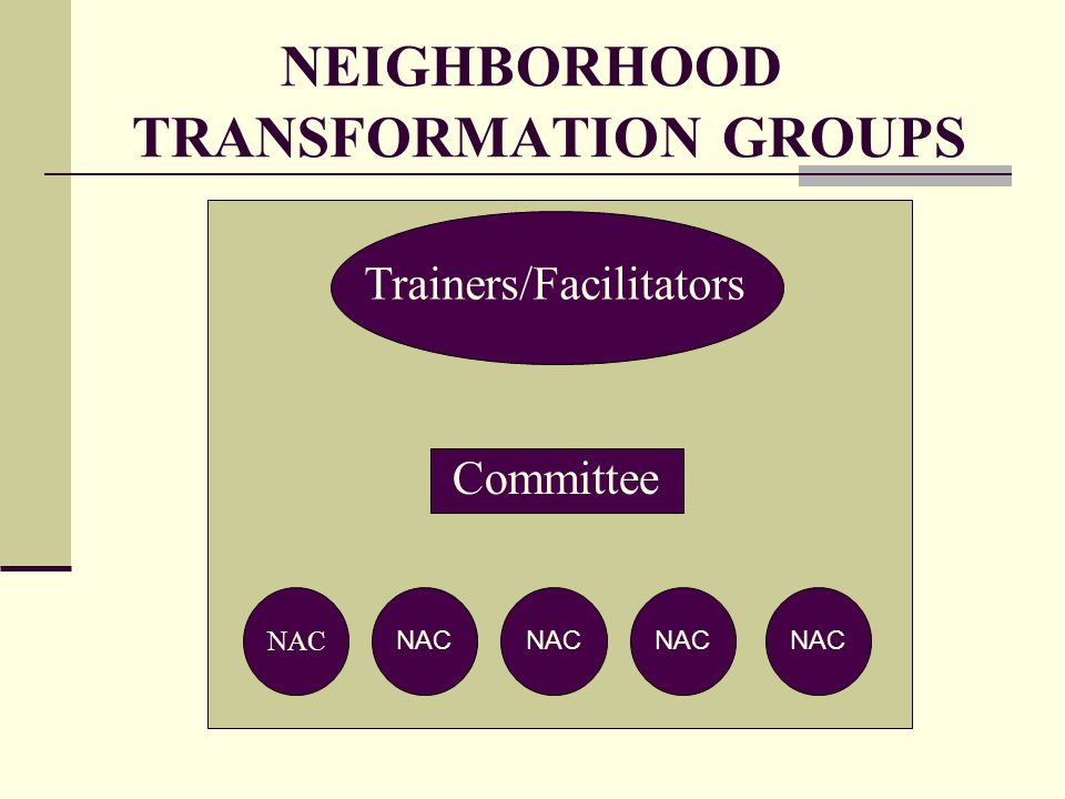 NEIGHBORHOOD TRANSFORMATION GROUPS Trainers/Facilitators Committee NAC