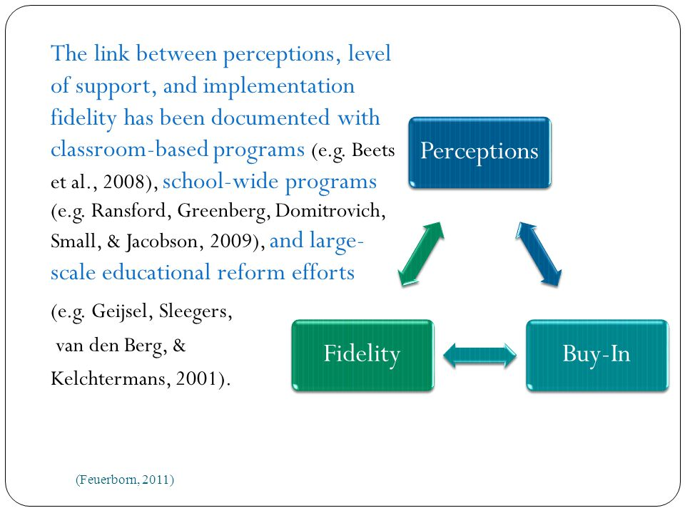 The link between perceptions, level of support, and implementation fidelity has been documented with classroom-based programs (e.g.