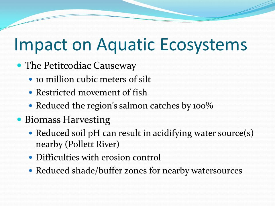 Impact on Aquatic Ecosystems The Petitcodiac Causeway 10 million cubic meters of silt Restricted movement of fish Reduced the region's salmon catches