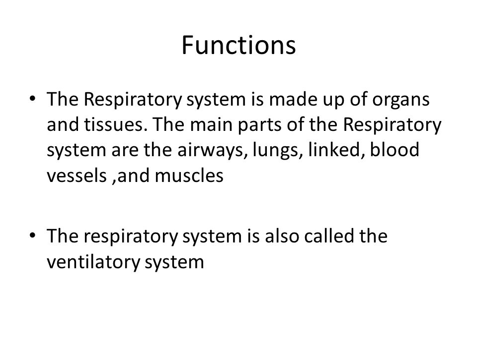 Functions The Respiratory system is made up of organs and tissues. The main parts of the Respiratory system are the airways, lungs, linked, blood vess