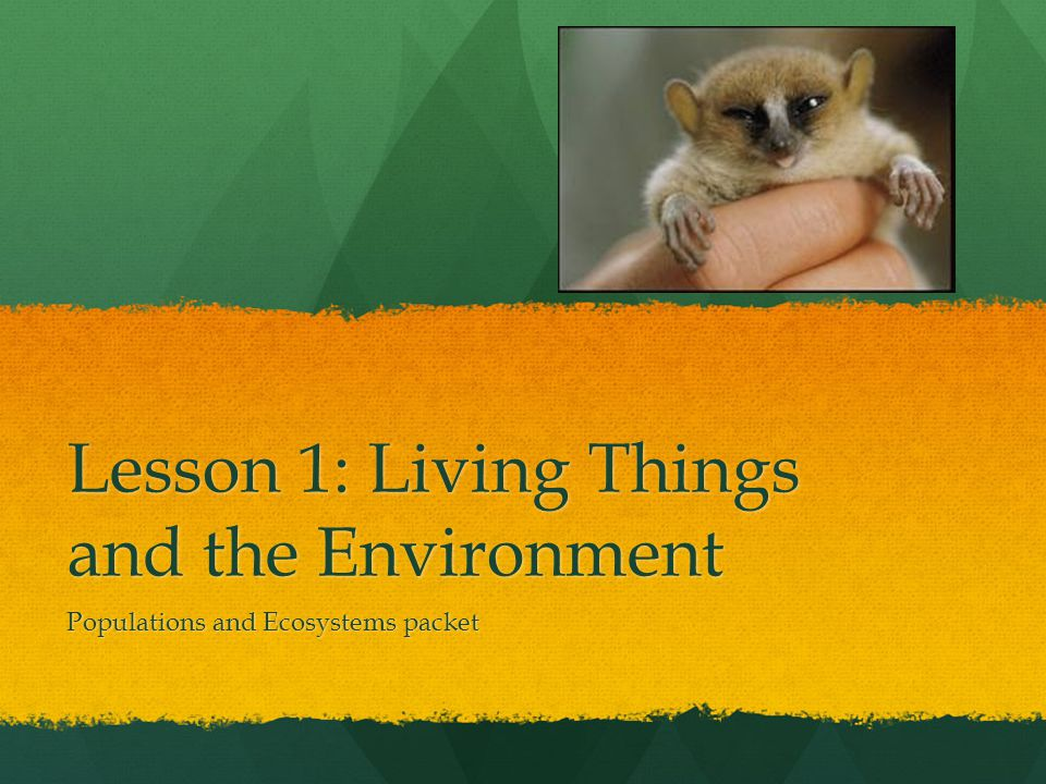 Lesson 1: Living Things and the Environment Populations and Ecosystems packet