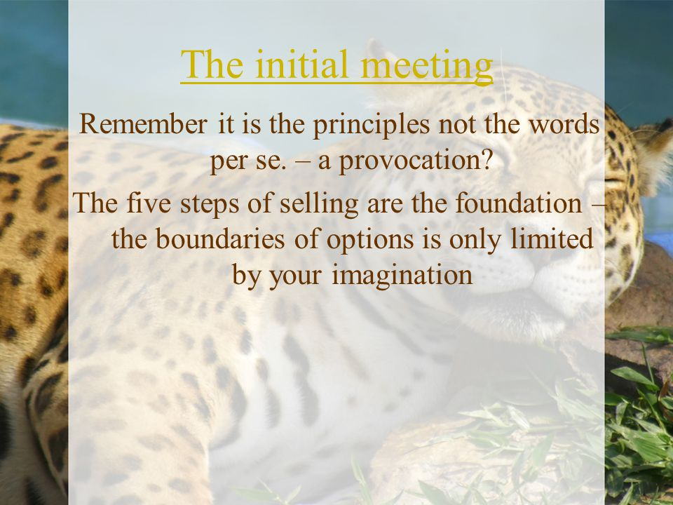 The initial meeting Remember it is the principles not the words per se. – a provocation? The five steps of selling are the foundation – the boundaries