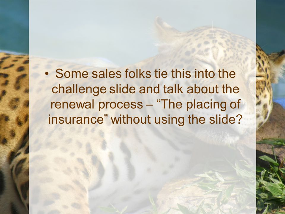 """Some sales folks tie this into the challenge slide and talk about the renewal process – """"The placing of insurance"""" without using the slide?"""