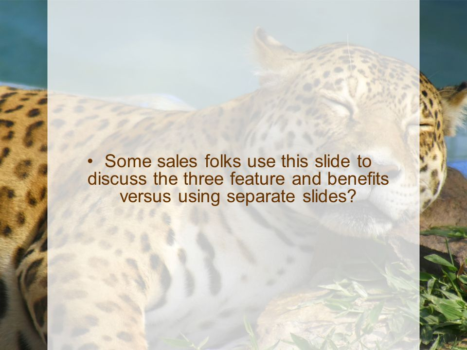 Some sales folks use this slide to discuss the three feature and benefits versus using separate slides