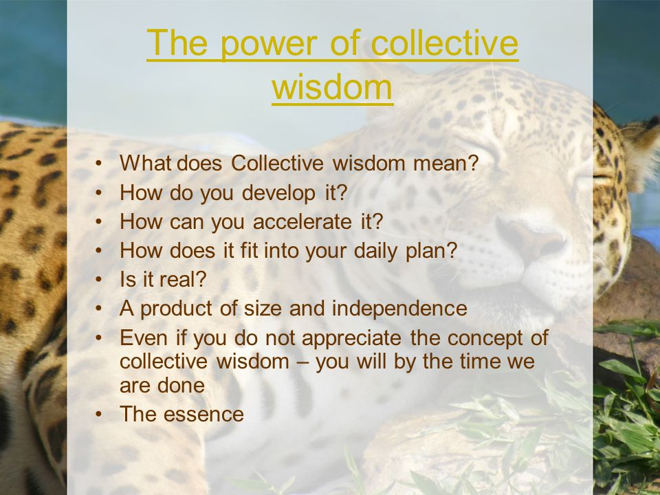 The power of collective wisdom What does Collective wisdom mean? How do you develop it? How can you accelerate it? How does it fit into your daily pla