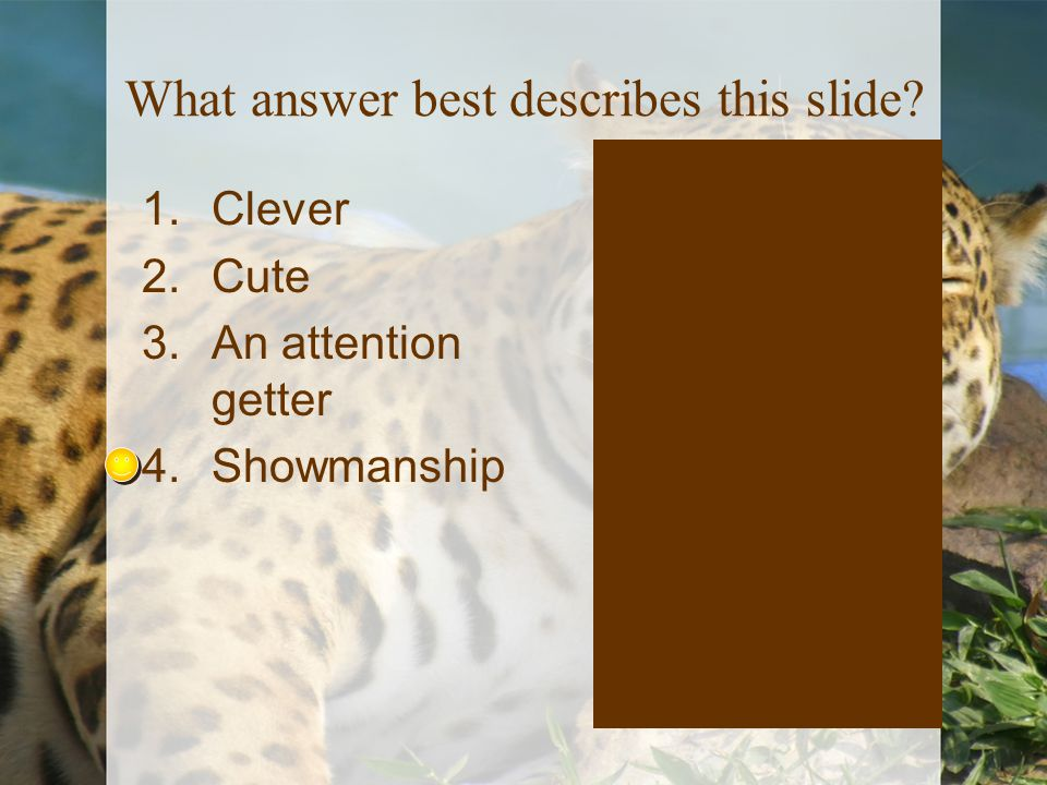 What answer best describes this slide? 1.Clever 2.Cute 3.An attention getter 4.Showmanship