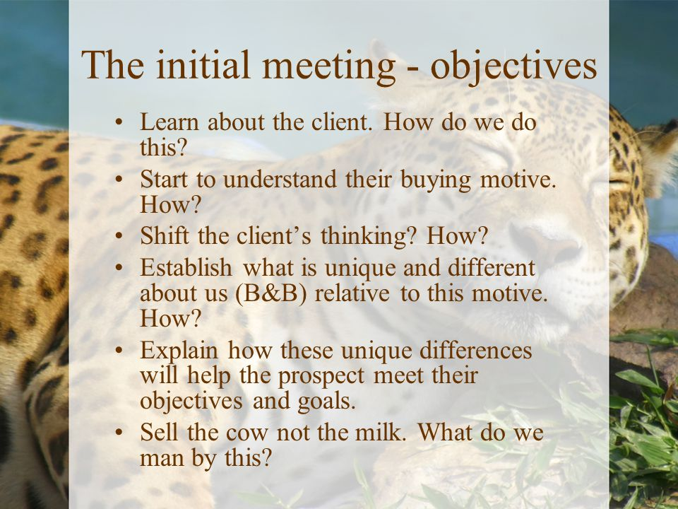 The initial meeting - objectives Learn about the client. How do we do this? Start to understand their buying motive. How? Shift the client's thinking?
