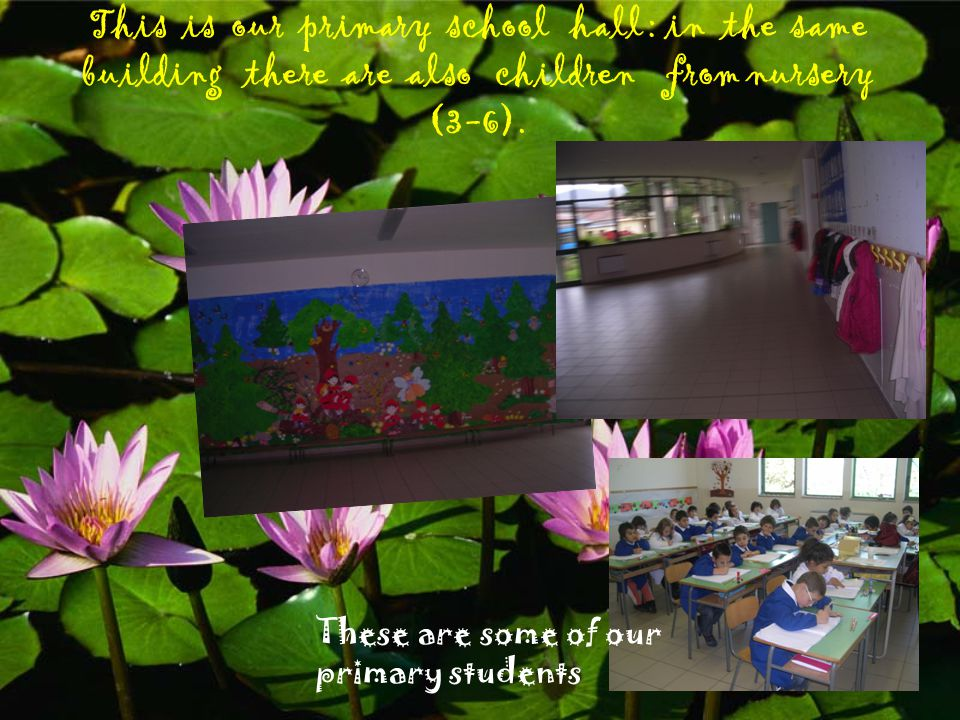 This is our primary school hall : in the same building there are also children from nursery (3-6).
