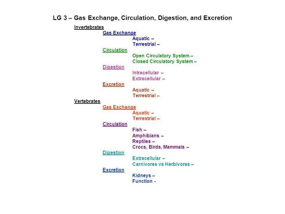 LG 3 – Gas Exchange, Circulation, Digestion, and Excretion Invertebrates Gas Exchange Aquatic – Terrestrial – Circulation Open Circulatory System – Cl