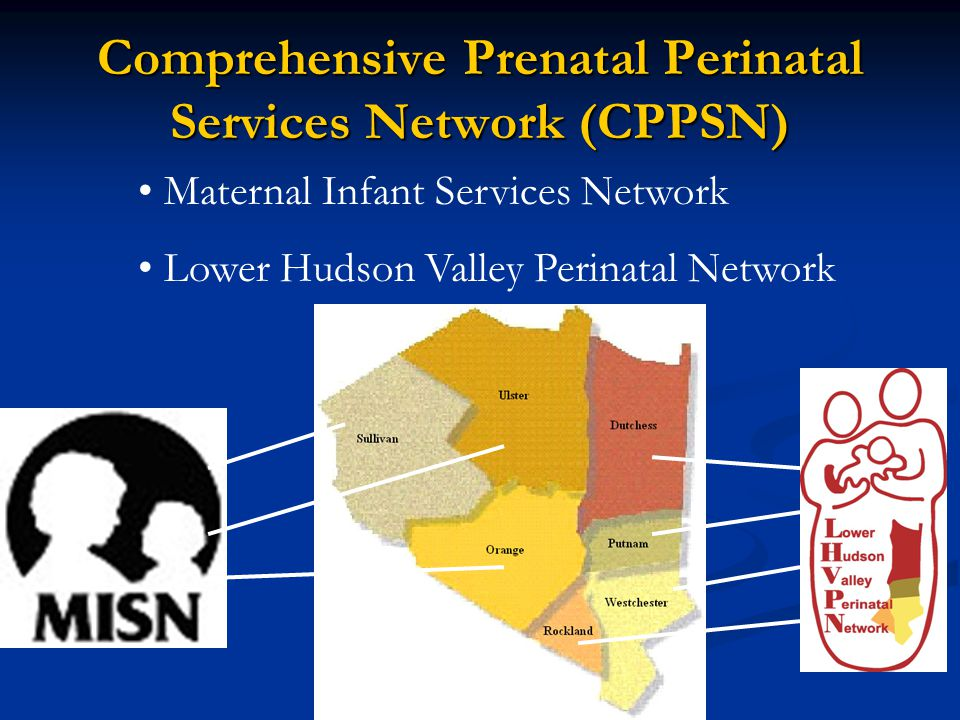 Comprehensive Prenatal Perinatal Services Network (CPPSN) Maternal Infant Services Network Lower Hudson Valley Perinatal Network