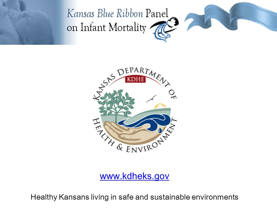 Background Information OTHER – BEST PRACTICES Fed Healthy Start Projects Michigan Kellogg Foundation Healthy Kansans living in safe and sustainable environments