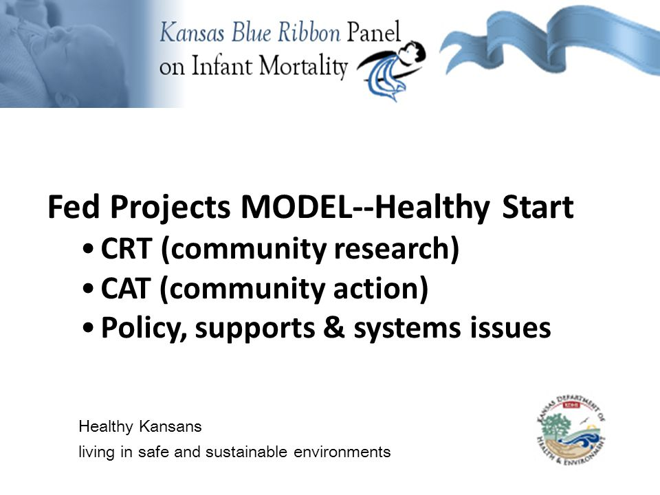Background Information Fed Projects MODEL--Healthy Start CRT (community research) CAT (community action) Policy, supports & systems issues Healthy Kansans living in safe and sustainable environments