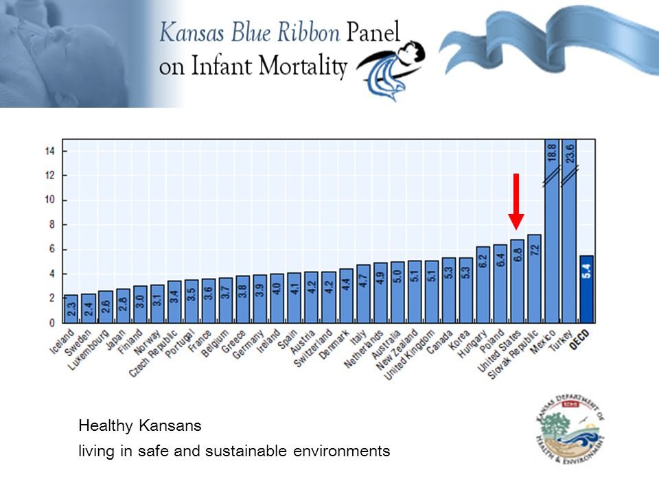 Background Information Healthy Kansans living in safe and sustainable environments