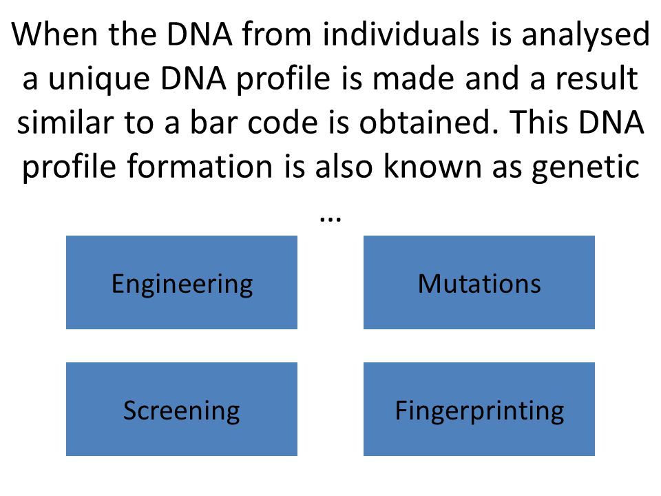What is the method used for separating the fragments of DNA when getting a DNA fingerprint.