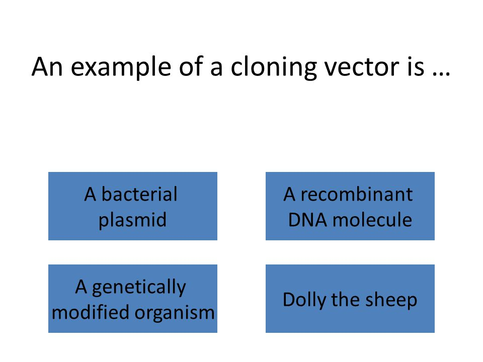 An example of a cloning vector is … A bacterial plasmid A recombinant DNA molecule A genetically modified organism Dolly the sheep
