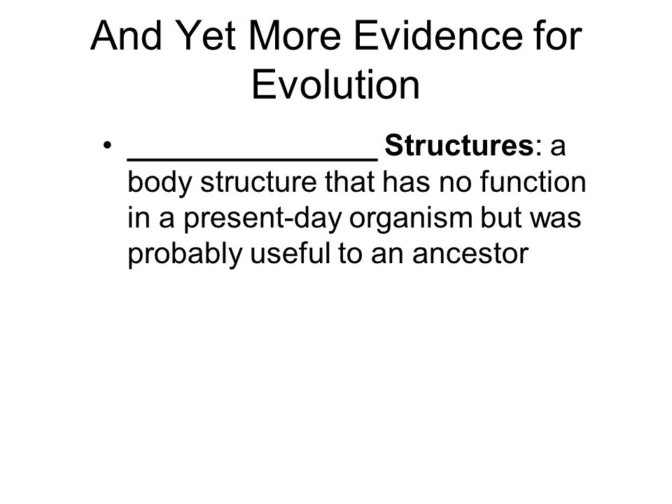 And Yet More Evidence for Evolution _______________ Structures: a body structure that has no function in a present-day organism but was probably usefu