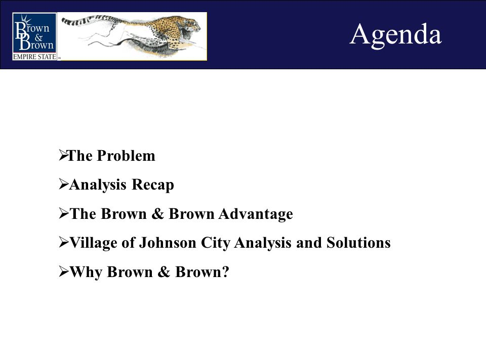  The Problem  Analysis Recap  The Brown & Brown Advantage  Village of Johnson City Analysis and Solutions  Why Brown & Brown? Agenda
