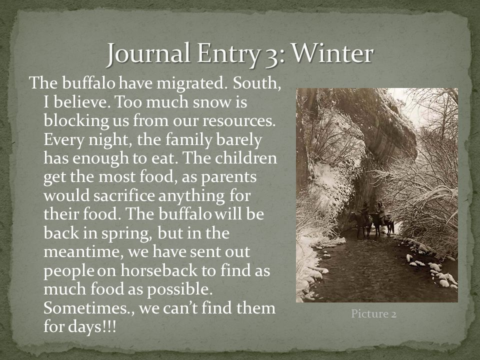The buffalo have migrated. South, I believe. Too much snow is blocking us from our resources.