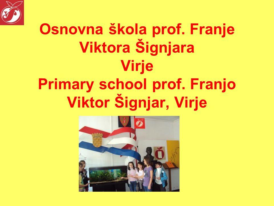 Osnovna škola prof. Franje Viktora Šignjara Virje Primary school prof. Franjo Viktor Šignjar, Virje