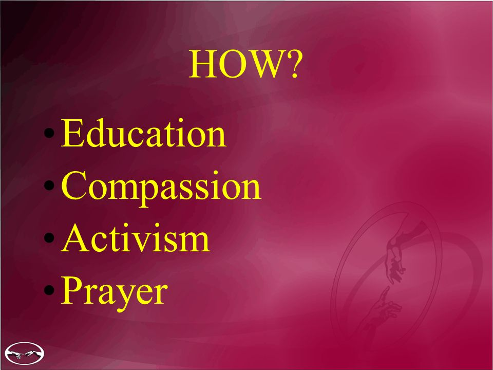 HOW? Education Compassion Activism Prayer