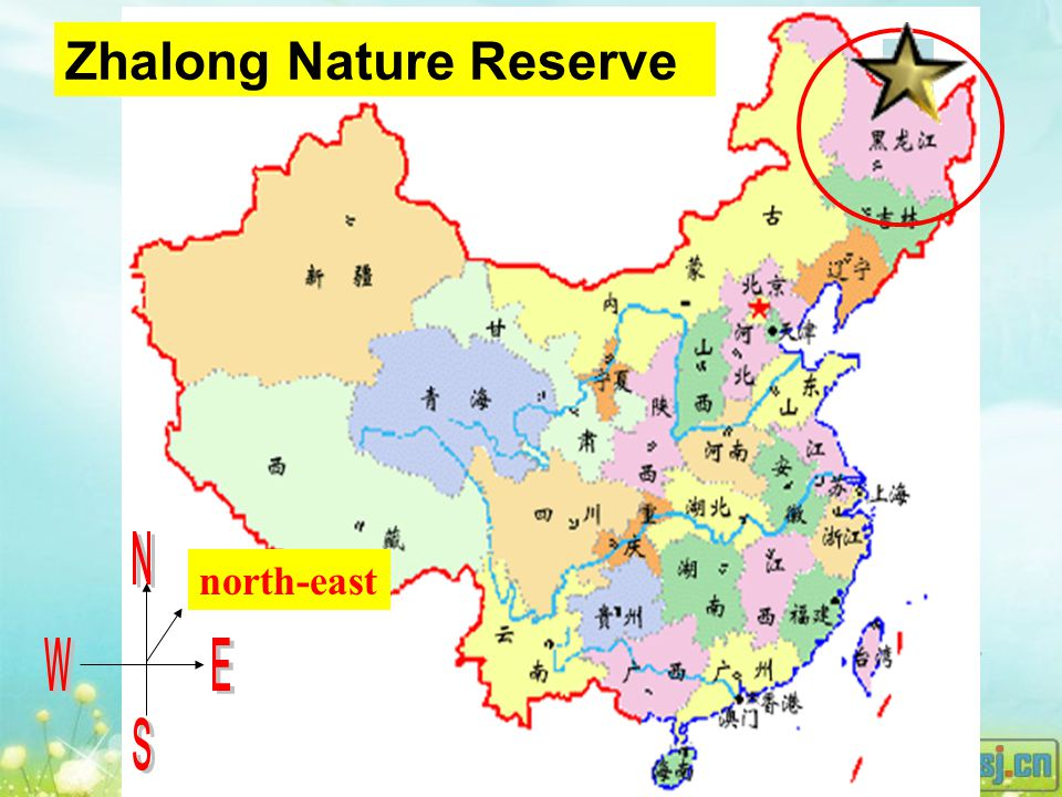 north-east Zhalong Nature Reserve D