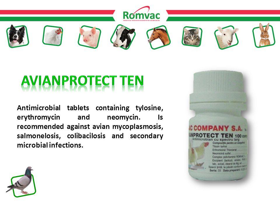 Antimicrobial tablets containing tylosine, erythromycin and neomycin.