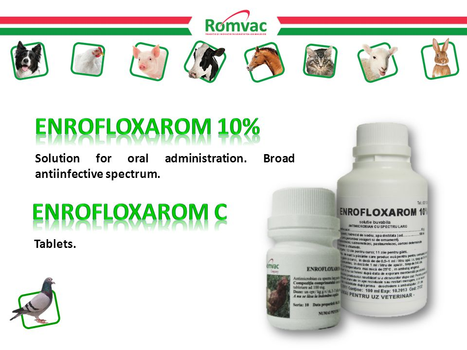 Solution for oral administration. Broad antiinfective spectrum. Tablets.