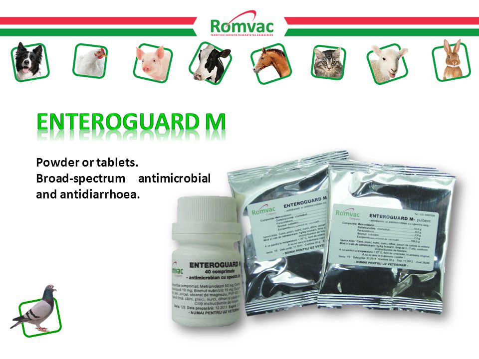 Powder or tablets. Broad-spectrum antimicrobial and antidiarrhoea.