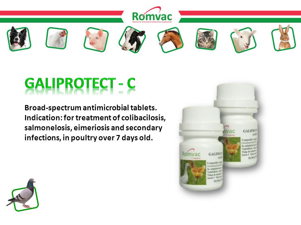 Broad-spectrum antimicrobial tablets.