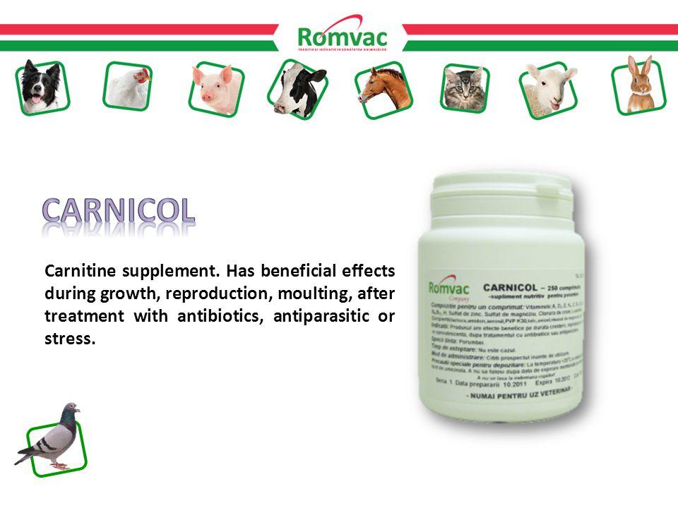 Carnitine supplement.