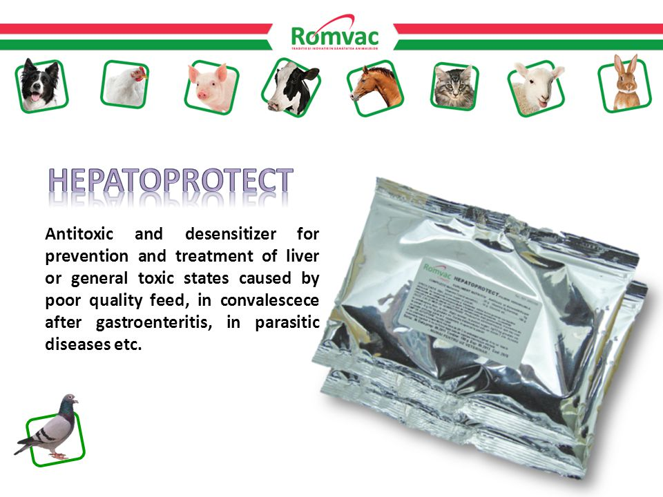Antitoxic and desensitizer for prevention and treatment of liver or general toxic states caused by poor quality feed, in convalescece after gastroenteritis, in parasitic diseases etc.
