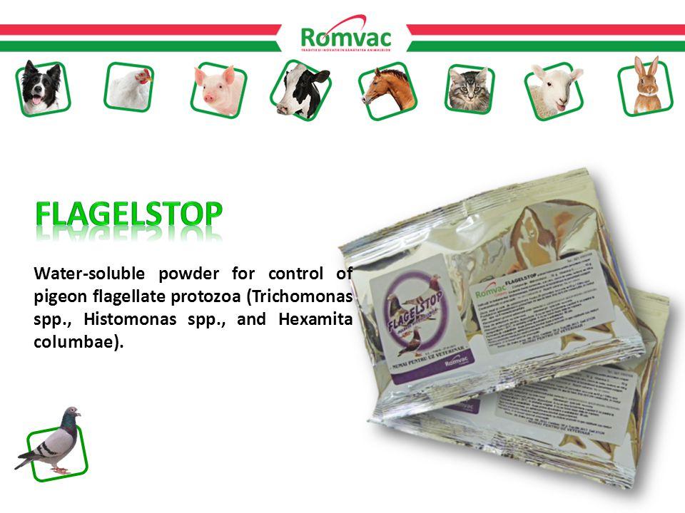 Water-soluble powder for control of pigeon flagellate protozoa (Trichomonas spp., Histomonas spp., and Hexamita columbae).