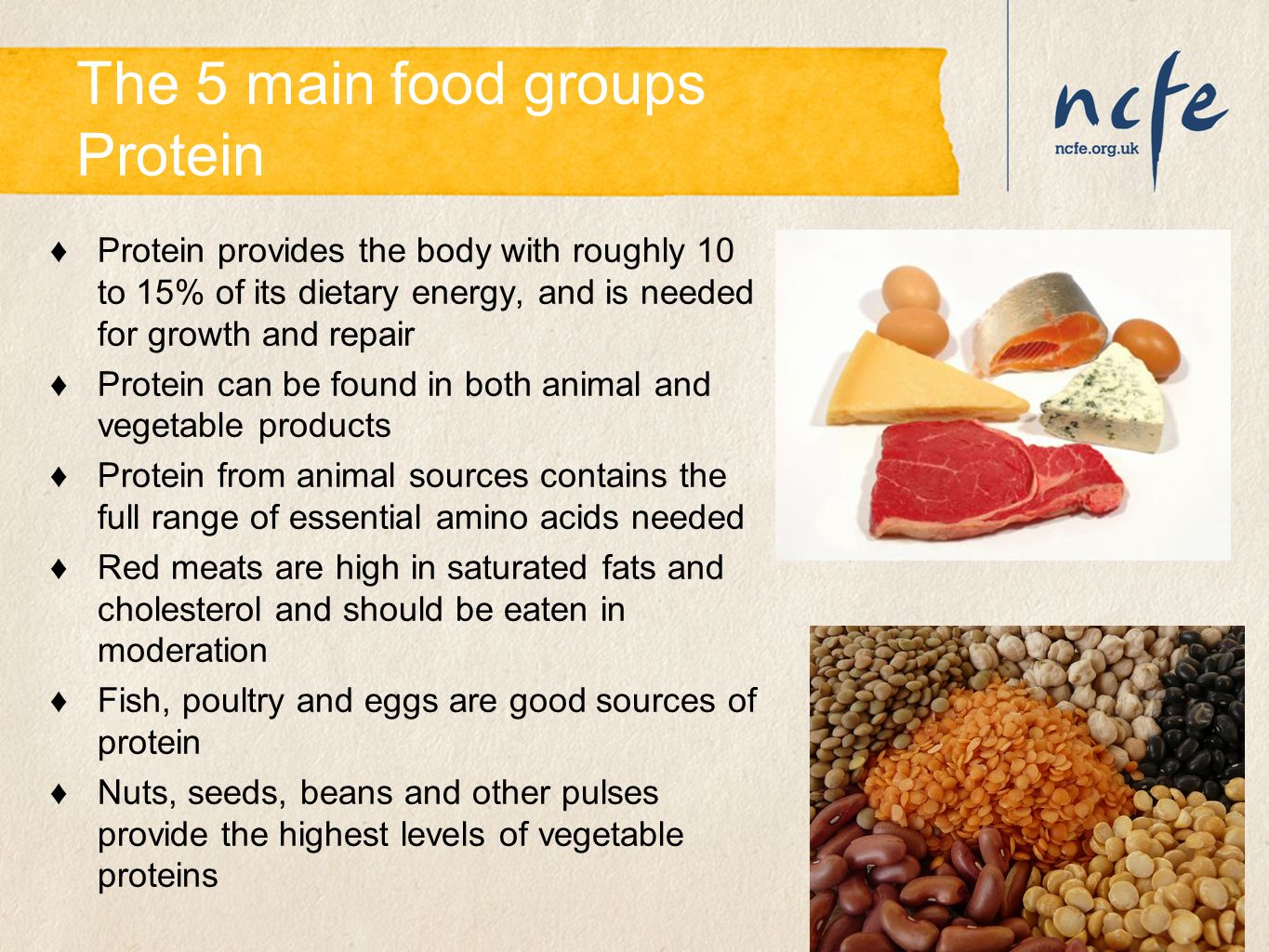 The 5 main food groups Protein ♦Protein provides the body with roughly 10 to 15% of its dietary energy, and is needed for growth and repair ♦Protein c