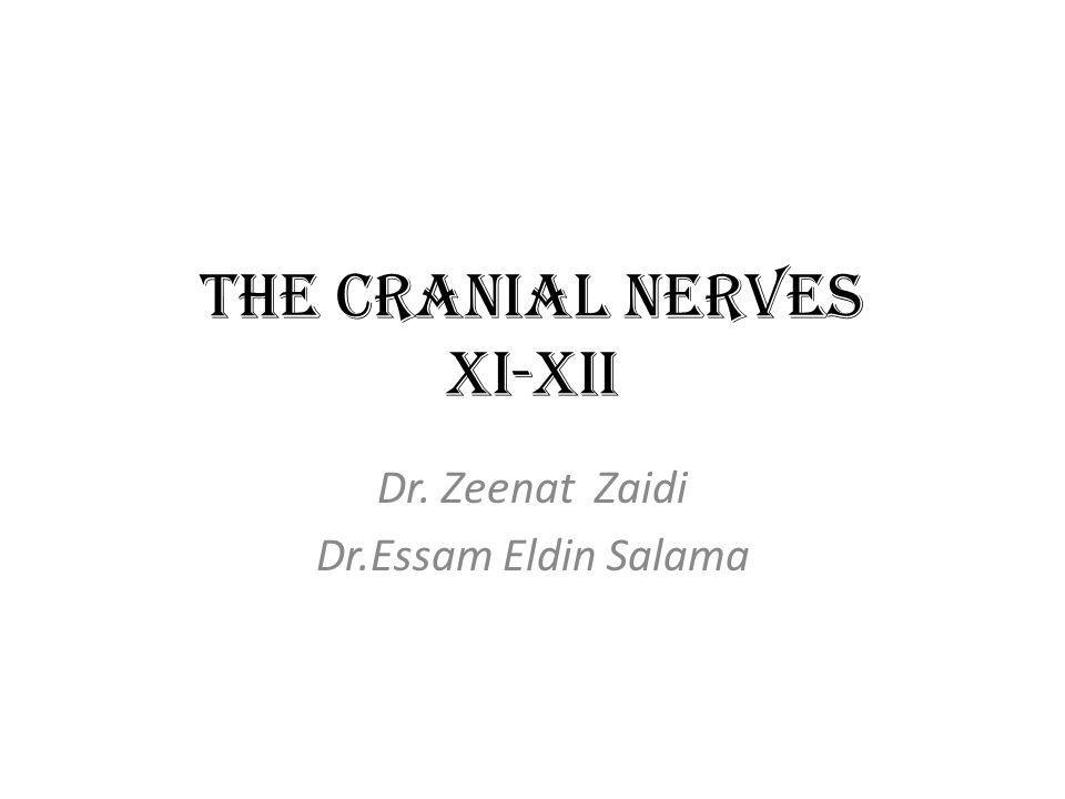 The Cranial Nerves XI-XII Dr. Zeenat Zaidi Dr.Essam Eldin Salama