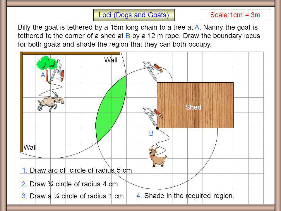 EX Q 1 Loci (Dogs and Goats) Shed Scale:1cm = 2m Buster the dog is tethered by a 10m long rope at the corner of the shed as shown in the diagram. Draw