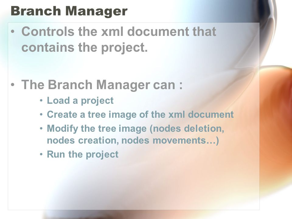 Branch Manager Controls the xml document that contains the project.