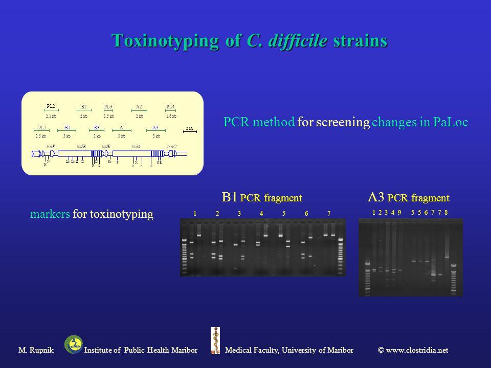 Toxinotyping of C.