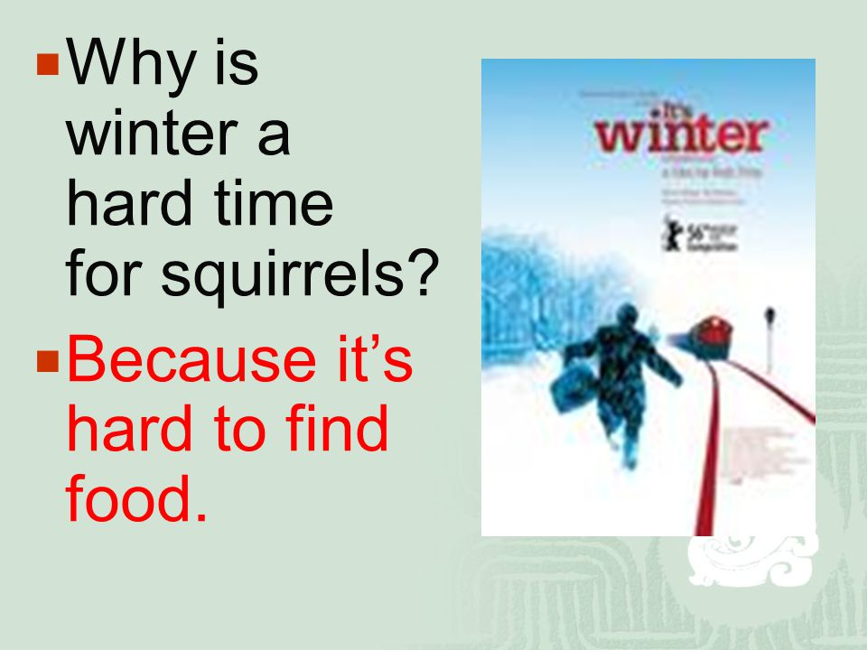  Why is winter a hard time for squirrels?  Because it's hard to find food.