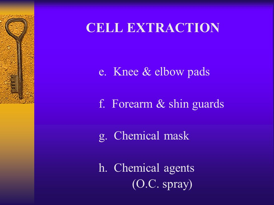 "6. ""CET"" Equipment a. Personal body armor (Turtle suit) b. Helmet c. No shank vest d. Groin cup CELL EXTRACTION"